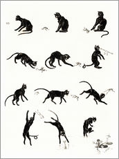 Stampa su plexi-alluminio  The cat and the frog - Théophile-Alexandre Steinlen