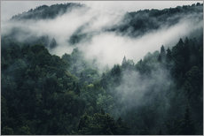 Adesivi murali  Mystic forests with fog - Oliver Henze