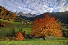 Adesivo murale  Funes Valley in autumn, Dolomites, South Tyrol, Italy - Roberto Sysa Moiola