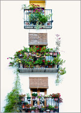 Adesivo murale  Facade with balconies full of flowers in Valencia