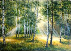 Adesivo murale Sunlight in the green forest