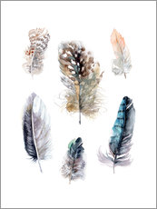Adesivi murali  Feathers collection - Verbrugge Watercolor
