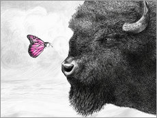 Adesivo murale Bison And Butterfly