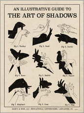 Stampa su plexi-alluminio  The Art of Shadows - Mary Urban