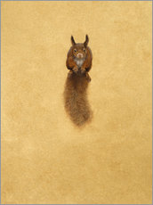 Adesivo murale Leaping Red Squirrel -