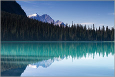 Poster Premium Reflection on Emerald Lake, British Columbia, Canada