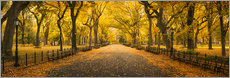 Poster Premium  Central Park in New York City, USA - Jan Christopher Becke
