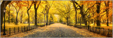Stampa su plexi-alluminio  Central Park in autunno - Art Couture