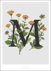 Poster Premium M is for Marigolds