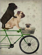 Poster Premium  Pugs on Bicycle - Fab Funky