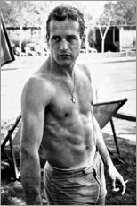 Poster  Paul Newman - niente camicia - Celebrity Collection