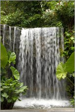 Adesivi murali  Waterfall in the Botanical Garden Orchid Garden in Singapore - Cindy Miller Hopkins