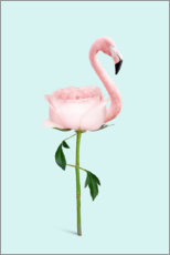 Poster Premium Flamingo Rose