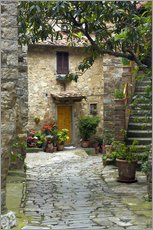 Stampa su plexi-alluminio  Quaint village lane in Montefiorale - Brenda Tharp