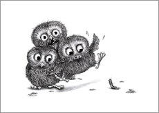 Stampa su plexi-alluminio  Help, three owls and a monster - Stefan Kahlhammer