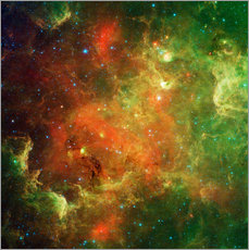 Adesivo murale  Clusters of young stars