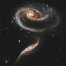 Stampa su plexi-alluminio  Arp 273 interacting galaxies in Andromeda.