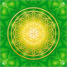 Dolphins DreamDesign - Flower of Life - Healing