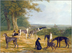 Adesivi murali  Nine Greyhounds in a Landscape - Jacques Laurent Agasse