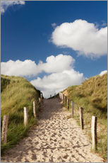 Stampa su plexi-alluminio  Sylt, path through dunes - Markus Lange