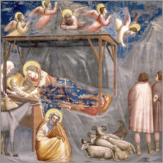 Stampa su plexi-alluminio  The Nativity - Giotto di Bondone