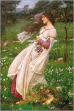Poster Premium  Anemoni - John William Waterhouse
