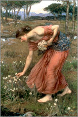 Adesivo murale  Narciso - John William Waterhouse