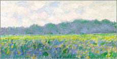 Stampa su plexi-alluminio  Field of Yellow Irises in Giverny - Claude Monet