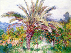 Stampa su legno  Palm tree at Bordighera - Claude Monet