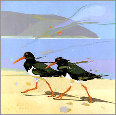 Stampa su plexi-alluminio  Shorebirds 2
