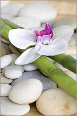 Andrea Haase Foto - Bamboo and orchid II
