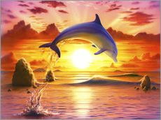 Stampa su plexi-alluminio  Day of the dolphin - sunset - Robin Koni