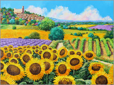 Adesivi murali  Vineyards and sunflowers in Provence - Jean-Marc Janiaczyk