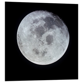 Forex  Full Moon - Stocktrek Images