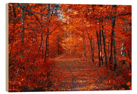 Stampa su legno  Colorful autumn - Steffen Gierok