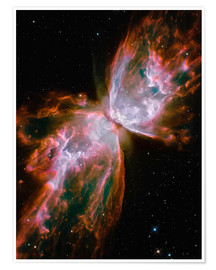 Poster Premium  The Butterfly Nebula