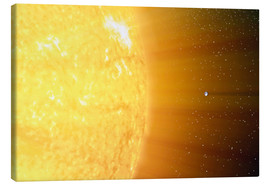 Stampa su tela  The relative sizes of the Sun and the Earth
