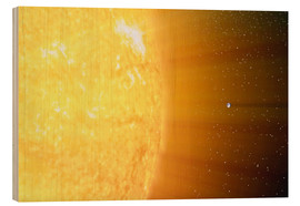 Stampa su legno  The relative sizes of the Sun and the Earth - Stocktrek Images