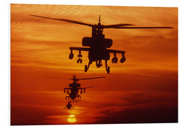 Stampa su PVC  AH-64 Apache anti-tank helicopters