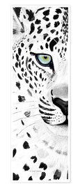 Poster Premium  The leopard - panorama - Annett Tropschug