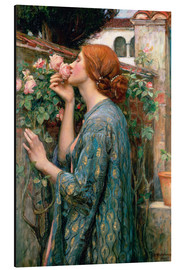 Alluminio Dibond  Anima della rosa - John William Waterhouse
