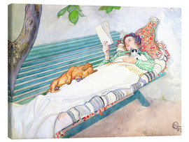 Tela  Woman Lying on a Bench - Carl Larsson