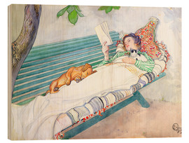 Legno  Woman Lying on a Bench - Carl Larsson