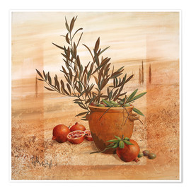 Poster Premium Pomegranate and olive harvest
