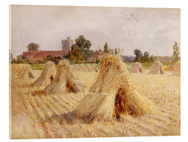 Stampa su vetro acrilico  Corn Stooks by Bray Church - Hardy Heywood