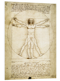 Forex  The Proportions of the human figure - Leonardo da Vinci