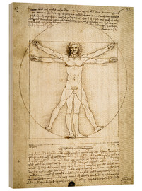 Legno  The Proportions of the human figure - Leonardo da Vinci