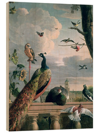 Legno  Palace of Amsterdam with Exotic Birds - Melchior de Hondecoeter