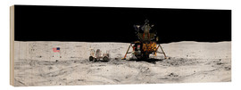 Stampa su legno  Apollo 16 lands in the lunar highlands