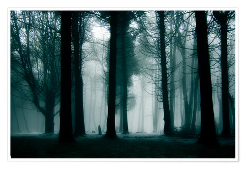 Poster Premium Enchanted forest